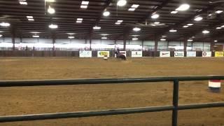 Ashley Mercer  Terrell Texas   Barrel Racing