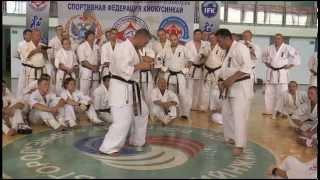 Уроки каратэ. Траектории и точки нанесения удара лоу-кик от Хадзимэ Казуми