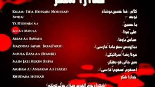 wajid hussain, Imran hussain wajid 2011, Hazara noha