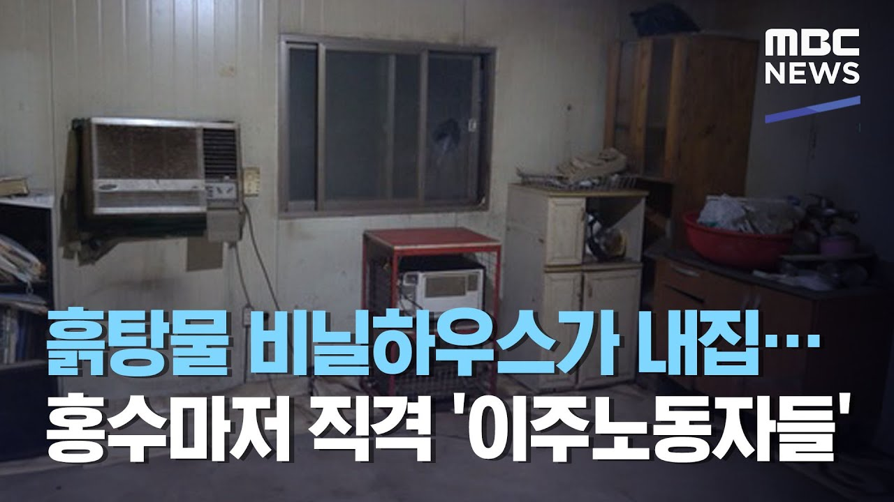 [MBC] 흙탕물 비닐하우스가 내집…홍수마저 직격 '이주노동자들'