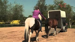 Fluidum Reitschule Imke Eisenschmidt Natural Horsemanship Brux/Westensee