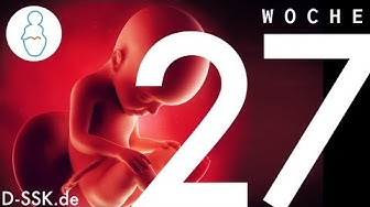 27. SSW / 27. Schwangerschaftswoche ✪ D-SSK.de