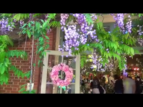 Visit Filoli Gardens near Redwood City. Bay Area Weekend Trip San Francisco nature and hiking