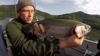 tennessee smokey mountain fishing for giant rainbow trout must see video