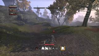 The Elder Scrolls Online: Tamriel Unlimited PvP A day In The woods