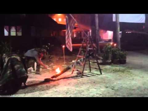 briged al qassam from malaysia