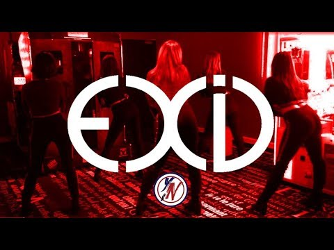 EXID (이엑스아이디) - 덜덜덜 (DDD) Dance Cover from Young Nation Studio ( YNS )  ( From France )