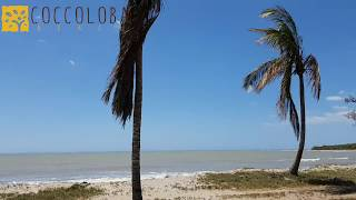 Hotel Coccoloba Beach in Colombia - Relax in paradise