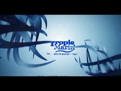 Download Tropic Marin - Basisset Ratgeber - DE