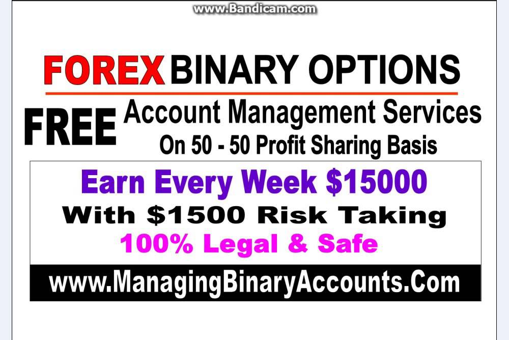 Best forex brokers in usa