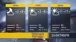 Прогноз на 24 октября: погода останется аномально-тёплой