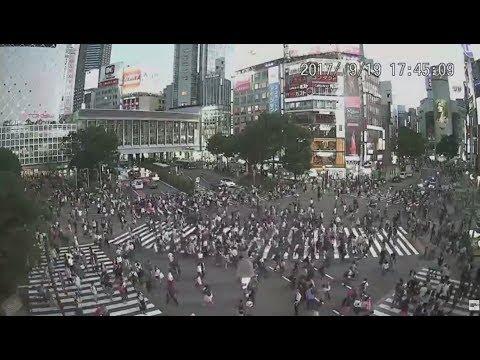 【LIVE 247 CAMERA】渋谷スクランブル交差点 ライブ映像 Shibuya scramble crossing