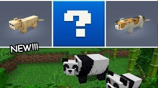 Minecraft New Panda & Cat Secret Features! Live Beta 1.8.0.8 Gameplay! Xbox, PE & Windows 10