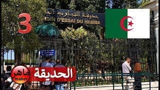 أول مرة أعرف أن الجزائر فيها هذا - ماهر في الجزائر