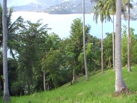 PROPERTY FOR SALE IN THE PHILIPPINES