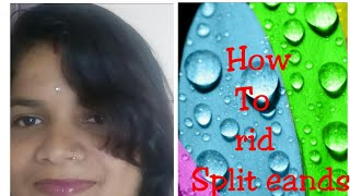 How to rid split eands/hair care routine (kannada)