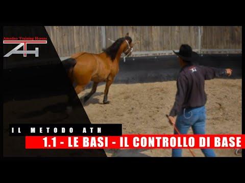 METODO ATH - LE BASI - IL CONTROLLO DI BASE