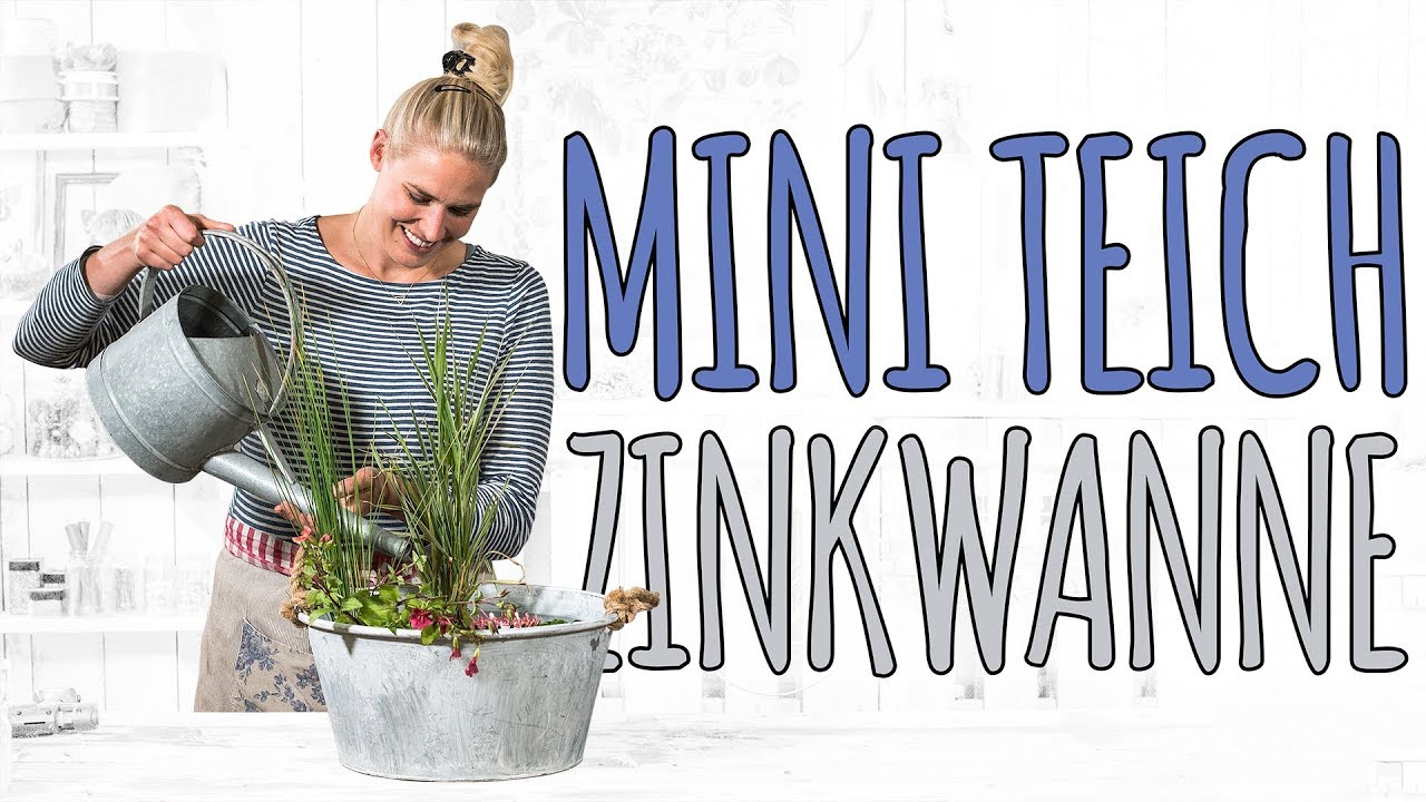Mini Teich Zinkwanne Diy Youtube