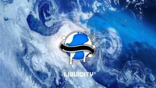 Dushi - Crushed ft. Sylvia Stone