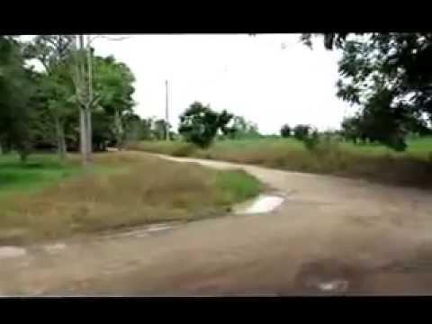 ps thai success ออร์แกนิค คิลเลอร์ โทร.091 4645691