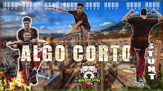 ALGO CORTO / WOW BOYS CICLAS / STUNT BIKE / MTB STUNT / STUNT / PALMIRA / VALLE DEL CAUCA / COLOMBIA