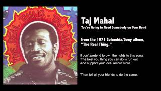 Taj Mahal - You