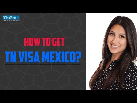 TN Mexico: NAFTA Visas for Mexican Professional Workers
