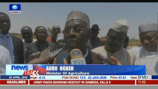 Rice Production: Min. Of Agric Insists Nigeria Must Learn To Produce