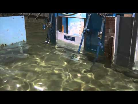 TFC Flood Barrier wave test. PAS1188