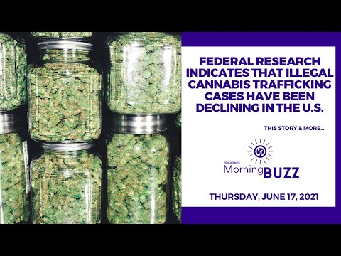 New Federal Research Indicates Illegal Cannabis Trafficking Cases Have Been Declining in the U.S.
