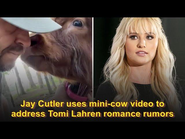 Jay Cutler uses mini-cow video to address Tomi Lahren romance rumors