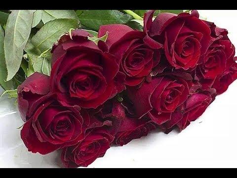 Фрагмент ТВ Бордовые розы