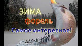 Зимние рыбалки по форели Самые интересные моменты сезона 2020 2021 Winter trout fishing