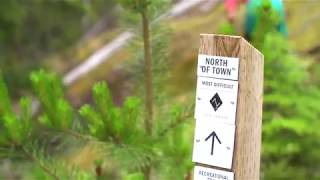 Insider's Guide to Whistler's Mountain Bike Trails: Whistler North