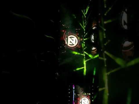 ZEDD Concert
