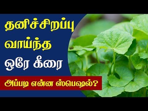 Health Benefits of Vallarai Keerai - Tamil Health Tips thumbnail