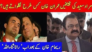 Rana SanaUllah Comment On Pm Imran Khan And Murad Saeed Relationships