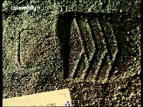 Forensic Files   01x10   Insect Clues
