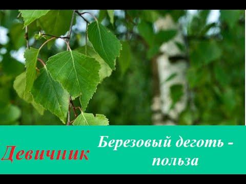 Мыло Невская косметика Дегтярное Отзывы покупателей