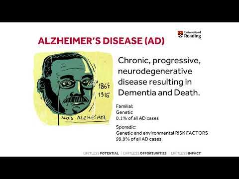 Of Mice & Men - preclinical study of dementia. Francesco Tamagnini