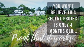 The Farm of the Future: Self Sufficiency + Feeding Community in Under 4 Months!  @Jubilee Organics
