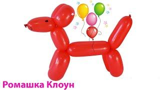 СОБАЧКА ИЗ ДЛИННОГО ШАРИКА ШДМ как сделать своими руками Balloon Animal Dog TUTORIAL