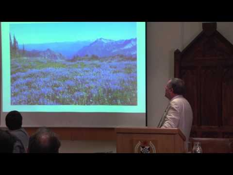 Alister McGrath - The search for coherence in science and religion