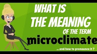 What is MICROCLIMATE? What does MICROCLIMATE mean? MICROCLIMATE meaning, definition & explanation