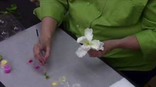 Sugar Paste Parrot Tulip Tutorial