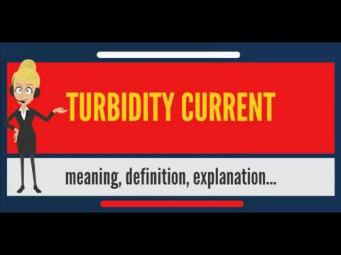What is TURBIDITY CURRENT? What does TURBIDITY CURRENT mean? TURBIDITY CURRENT meaning