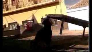 Actuación de Germán Vidal en la Ribera de Cabanes