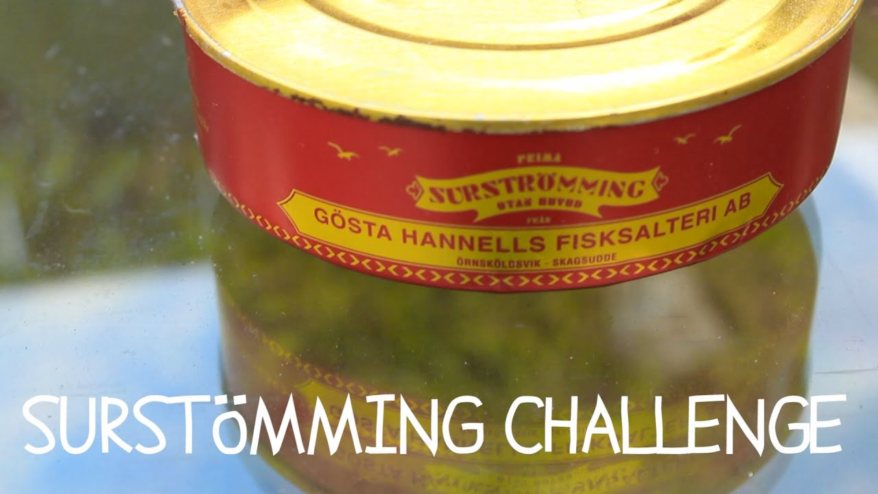 Surstr mming challenge 2013 trying to eat surstromming for Swedish fermented fish