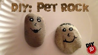 DIY: Pet Rock - Great Craft For Kids