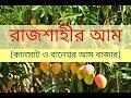 Mangoes of Rajshahi - রাজশাহীর আম । কানসাট ও বানেশ্বর আমের বাজার